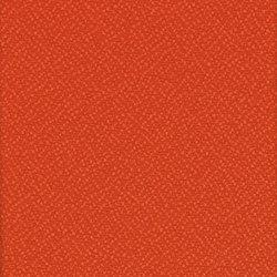 Lucia Tortuga | Tessuti per pareti | Camira Fabrics