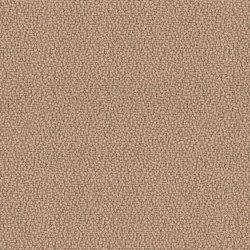 Lucia Sandstorm | Wall fabrics | Camira Fabrics