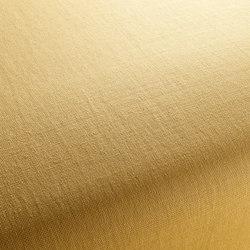 WARWICK 1-1176-146 | Fabrics | JAB Anstoetz