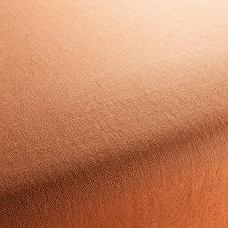 WARWICK 1-1176-161 | Fabrics | JAB Anstoetz