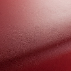 GAUCHO 1-1142-114 | Drapery fabrics | JAB Anstoetz