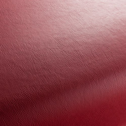 GAUCHO 1-1142-213 | Artificial leather | JAB Anstoetz