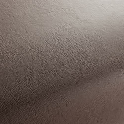 GAUCHO 1-1142-122 | Artificial leather | JAB Anstoetz