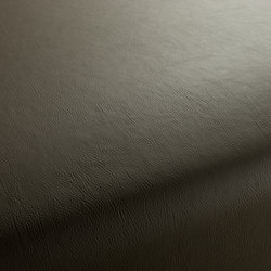 GAUCHO 1-1142-130 | Artificial leather | JAB Anstoetz