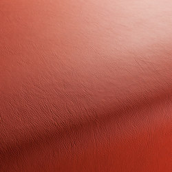 GAUCHO 1-1142-361 | Artificial leather | JAB Anstoetz