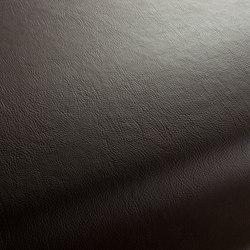 GAUCHO 1-1142-320 | Artificial leather | JAB Anstoetz