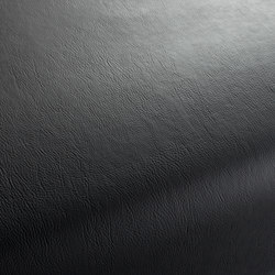 GAUCHO 1-1142-395 | Artificial leather | JAB Anstoetz