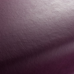GAUCHO 1-1142-387 | Artificial leather | JAB Anstoetz