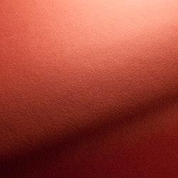 KAVALLERIETUCH-DRAP 1-1225-060 | Tejidos | JAB Anstoetz