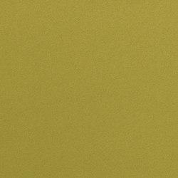 Dimout 150 | 6574 | Fabrics | DELIUS
