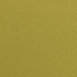 Dimout 150 | 6574 | Drapery fabrics | DELIUS