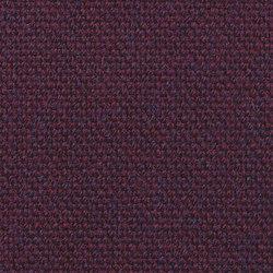 Main Line Plus Bellis | Fabrics | Camira Fabrics