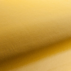 THE COLOUR VELVET VOL.3 CH1912/042 | Fabrics | Chivasso