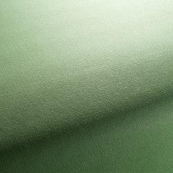 COLORADO 1-1205-031 | Fabrics | JAB Anstoetz