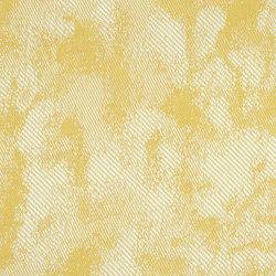 Pale | 2001 | Tejidos murales | DELIUS