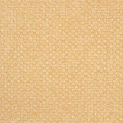 Parevo DIMOUT | 2550 | Drapery fabrics | DELIUS
