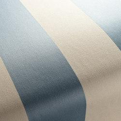 STRIATA 1-2958-050 | Fabrics | JAB Anstoetz