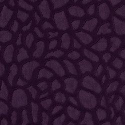 Viola | 4552 | Curtain fabrics | DELIUS