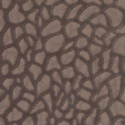 Viola | 8551 | Tejidos para cortinas | DELIUS
