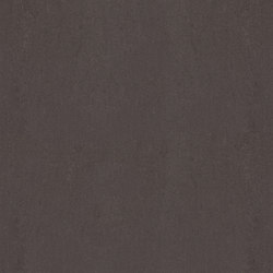 Archgres Dark Grey | Ceramic tiles | TERRATINTA GROUP