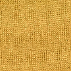 Oxygen Namaskar | Fabrics | Camira Fabrics