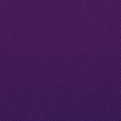 Oxygen Reiki | Tissus | Camira Fabrics