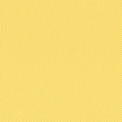 Racer Dash | Fabrics | Camira Fabrics