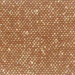 Silk Tussah | Tessuti | Camira Fabrics