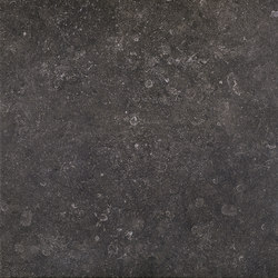 Stonevolution Zwart | Tiles | Terratinta Ceramiche