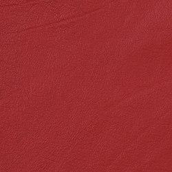 Vintage Morgan | Naturleder | Camira Fabrics