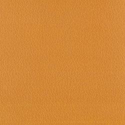 Vintage Hub | Natural leather | Camira Fabrics