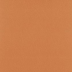 Vintage Phantom | Natural leather | Camira Fabrics