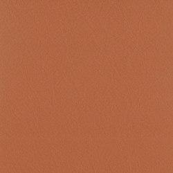 Vintage Bentley | Natural leather | Camira Fabrics