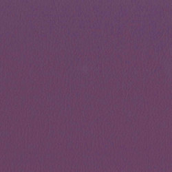 Vita Amethyst | Faux leather | Camira Fabrics