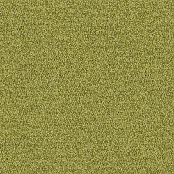 Xtreme Appledore | Tissus | Camira Fabrics