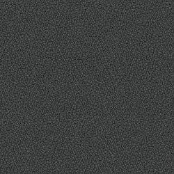 Xtreme Sombrero | Tessuti | Camira Fabrics