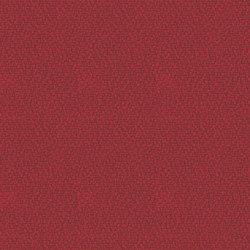 Xtreme Calypso | Fabrics | Camira Fabrics