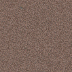 Xtreme Nougat | Tejidos | Camira Fabrics