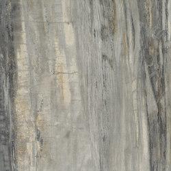 Stonewood | Ilex | Baldosas de suelo | Ceramica Magica