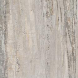 Stonewood | Robus | Floor tiles | Ceramica Magica