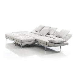 amber sofa | Divani componibili | Brühl