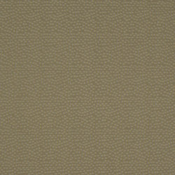 Aurum 703 | Tissus pour rideaux | Christian Fischbacher