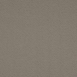 Aurum 727 | Drapery fabrics | Christian Fischbacher