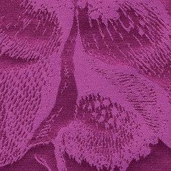 Beauté | Dekorstoffe | Christian Fischbacher