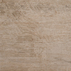 Rainforest Musgo | Tiles | Ceramica Mayor