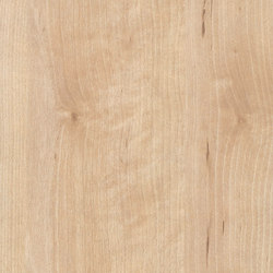 Masuren Birch sand | Panneaux de bois / dérivés du bois | Pfleiderer