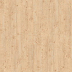 Masuren Birch Sand | Wood panels | Pfleiderer