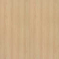 Bloomed Beech | Wood panels | Pfleiderer