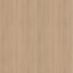 Style Beech natural | Wood panels | Pfleiderer