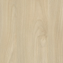 Fjord Beech light | Wood panels / Wood fibre panels | Pfleiderer